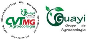 Guayi e CVT